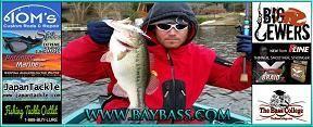 Largemouth and smallmouth bass Fishing Reports