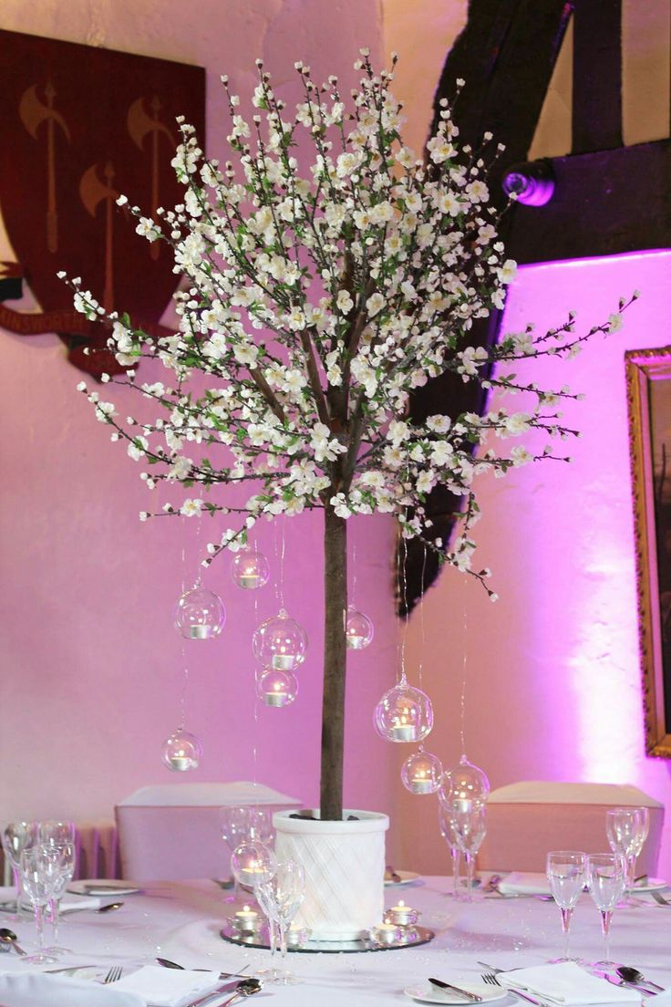 Cherry Blossom Trees create that statement of loveliness!