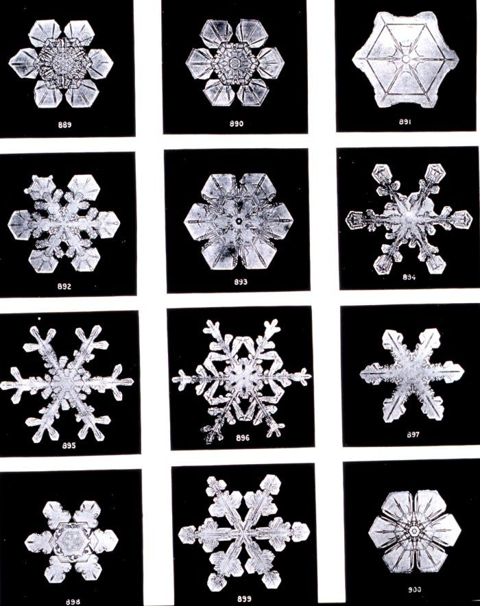 Photographs of Real Snowflakes by Wilson Bentley