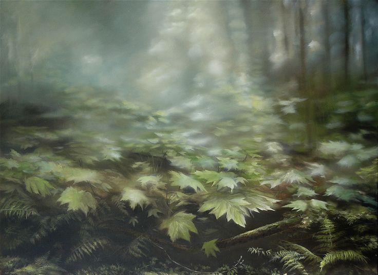 forest floor 40 x54