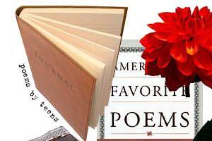 NewsHour Extra: Poetry website