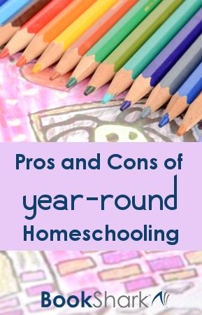the pros and cons of homeschooling essay