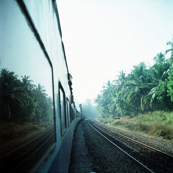 Where are we India rail palms tracks travel by NiceLittlePhotos, £10.00