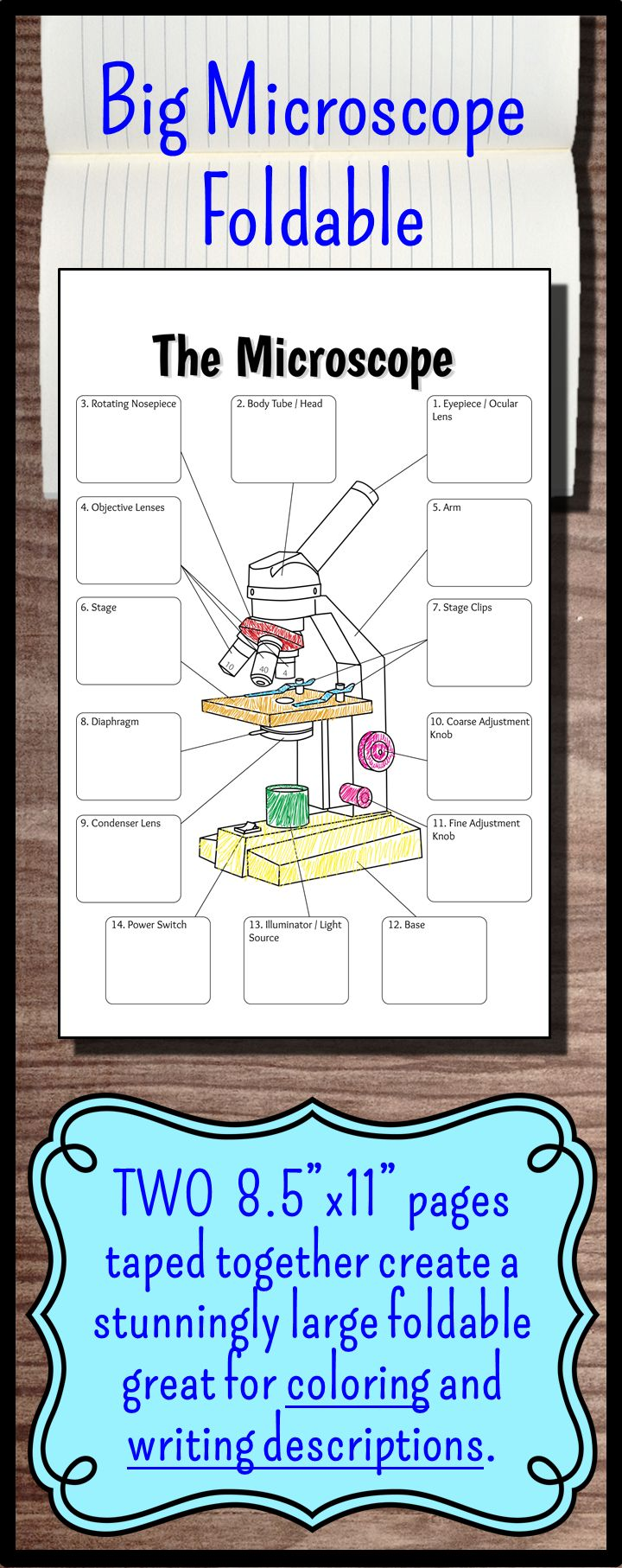 """This Giant Foldable (2 pieces of 8.5""""x11"""" paper taped together) provides students with a large enough area to write down all the functions of the parts of the microscope in one place. Students LOVE the large size and it creates a great review sheet as well as coloring activity. Perfect for interactive notebooks or it can be hole punched and put into a binder."""