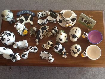 An amazing cow collection