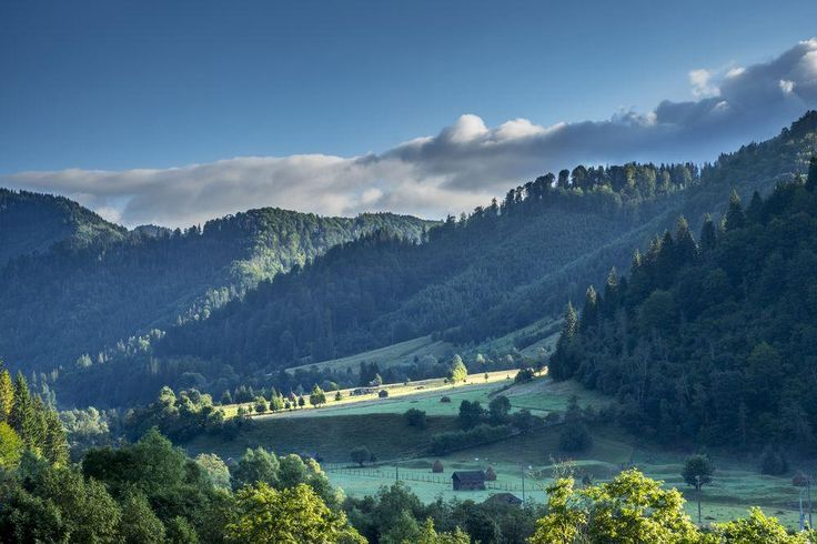 Piatra Craiului National Park Photo by Lucian Pirvu — National Geographic Your Shot