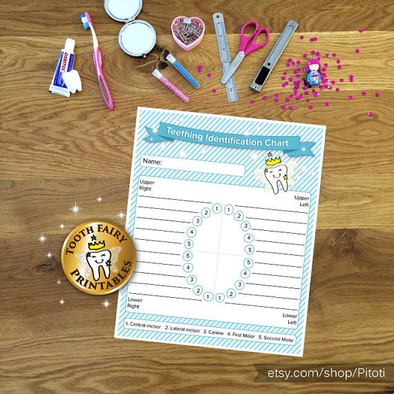 Baby Teething Identification Chart, Printable Teething Chart, Tooth fairy, tooth recoeds, tooth tracker for baby boy, Instant download