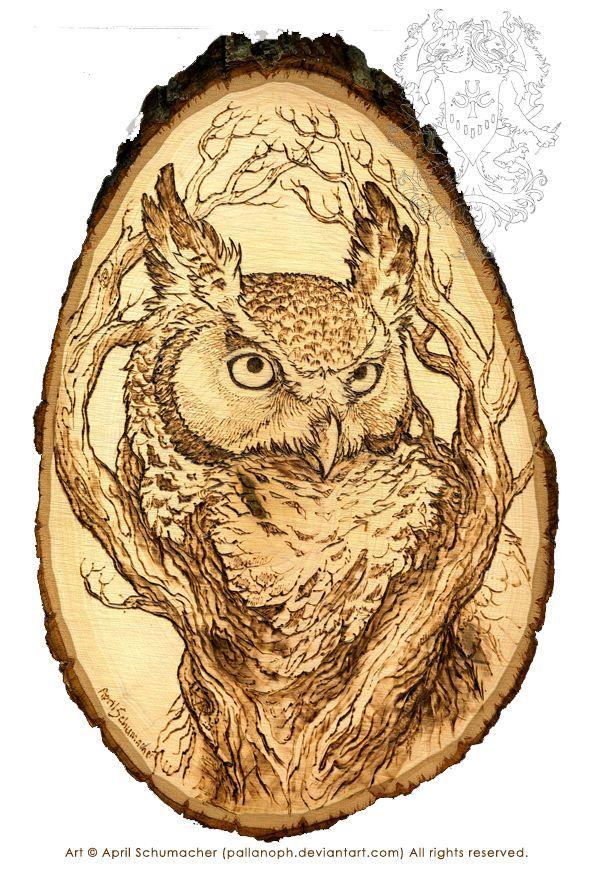 wood burning , pyrography Owl