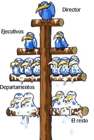 Esquema Piramidal, está en todas las organizaciones. http://beatrizmarrero.com/network-marketing-vs-esquema-piramidal/