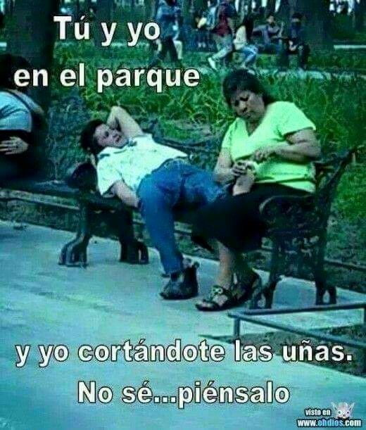 520 Best Images About Humor Frases On Pinterest