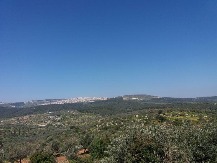 Vedere de pe Muntele Tabor