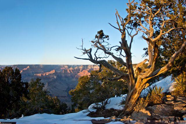 GREAT HUNTING: Pohled do krajiny v Americe - chráněné území parku...