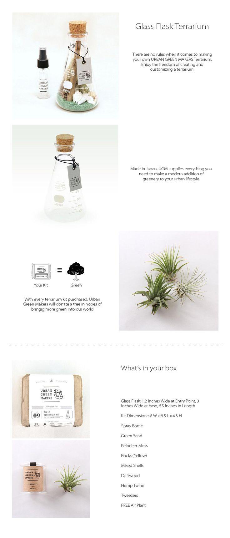 DIY Glass Flask Terrarium Make Your Own Terrarium