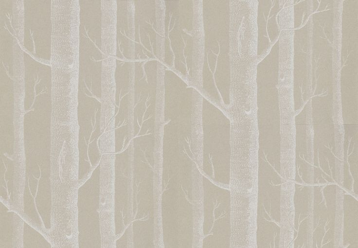 For bathroom. A very famous wallpaper. Woods (69/12149) - Cole & Son Wallpapers - Woods (Michael Clark 1959): A striking design sketched from trees and branches, making a unique repeat in an easy to use paste the wall wallcovering. showing in white on taupe - Available in other colours. Please ask for sample for true colour match.
