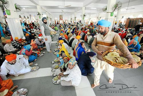 Food being served at Golden Temple - Sikhpoint.com