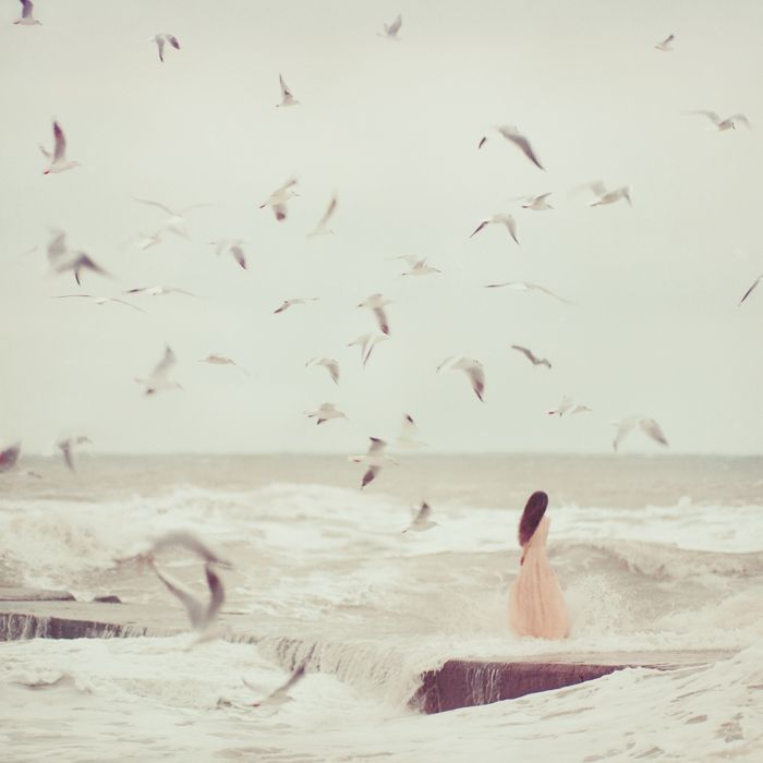Once upon a time, when women were birds, there was the simple understanding, that to sing at dawn and to sing at dusk, was to heal the world through joy. The birds still remember what we have forgotten; that the world is meant to be celebrated | Terry Tempest Williams
