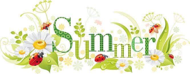 Четыре времени года: лето баннер