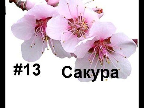 Сакура из фоамирана. Лариса Аптриева, МыловароФФ, Ошибки ручной работы
