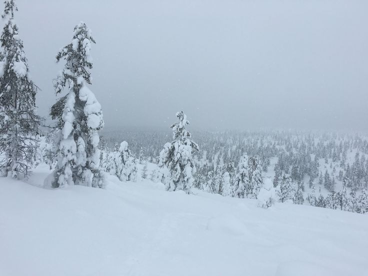 Great view from uphill at Saariselka, Finland