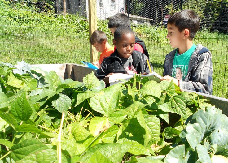 Balmville Elementary Students In Their Green Classroom