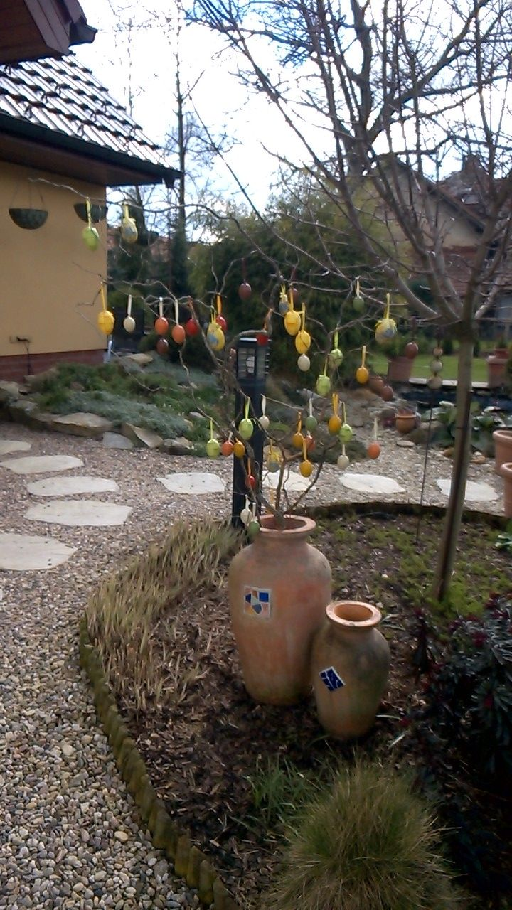 Krásné svátky velikonoční i z mé zahrady....:)