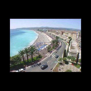 Nice. Promenade Des Anglais Palms