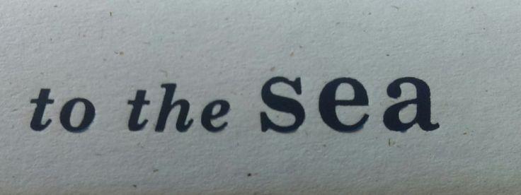 sebastian - the little mermaid