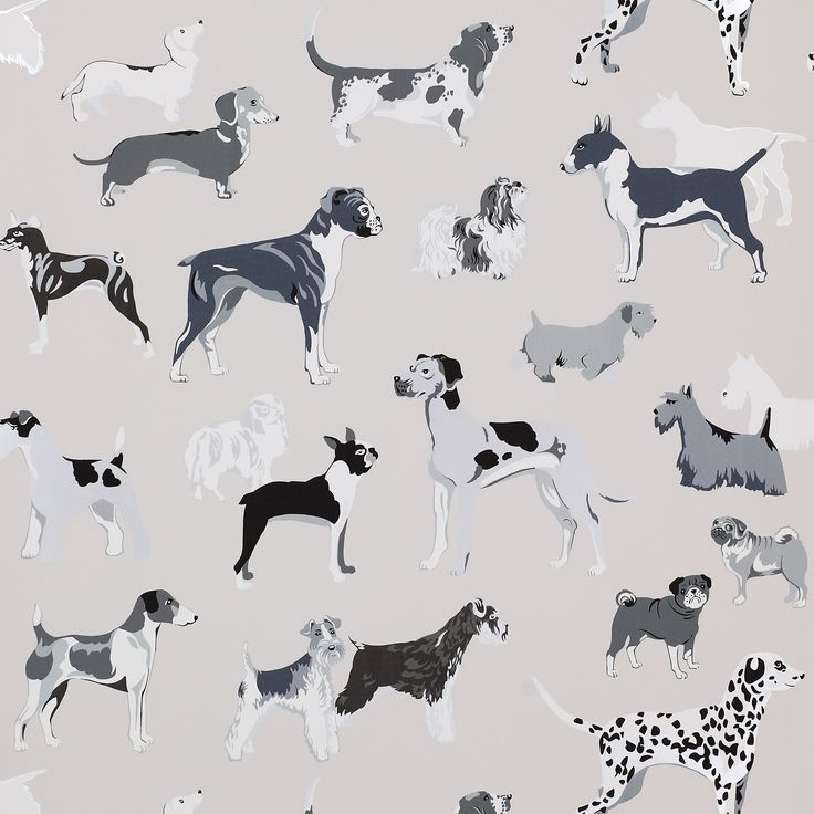 Hot Dogs Wallpaper Wallpaper - Cowtan Design Library