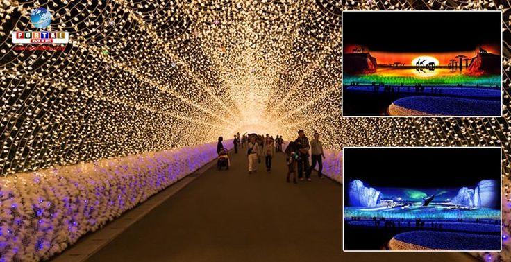 Começou a iluminação de inverno no Nabana no Sato! Veja as atrações deste ano e bom passeio com sua família!