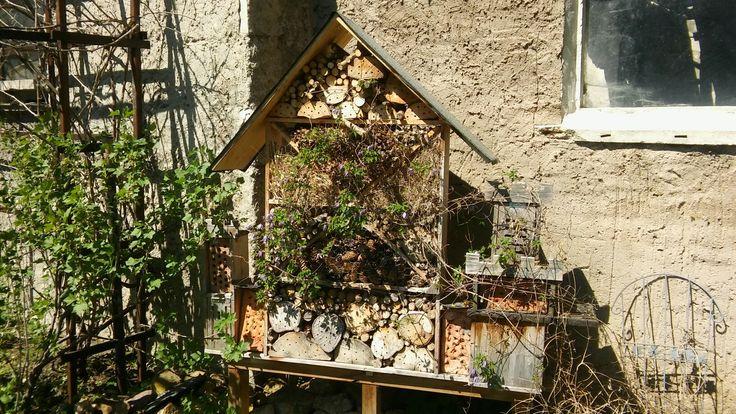 Insektenhotel in Form eines Schlosses mit verschiedenen Aufbauten für Hummeln, Wildbienen und Käfer. Es steht im dritten Jahr und hat schon viele kleine fleißige Helfer in unseren Garten gelockt.