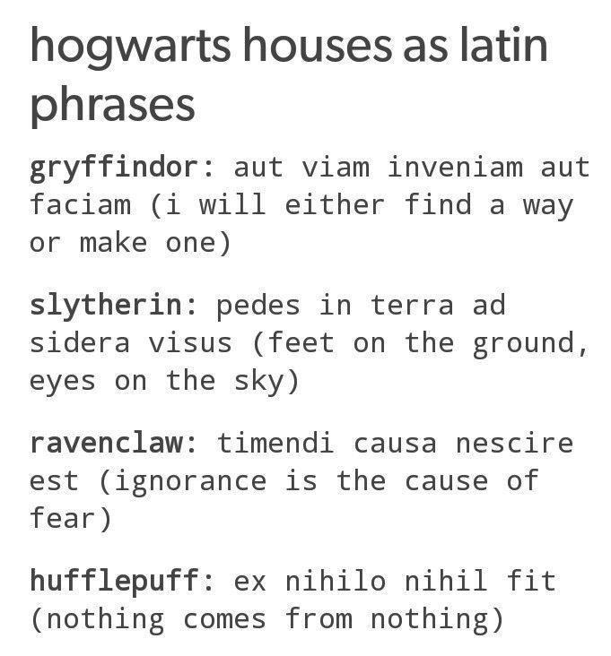 Best 25 Latin Quotes Ideas On Pinterest: Best 25+ Latin Phrases Ideas Only On Pinterest