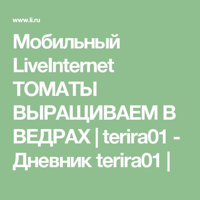 Мобильный LiveInternet ТОМАТЫ ВЫРАЩИВАЕМ В ВЕДРАХ | terira01 - Дневник terira01 |