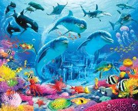 Onderwaterkamer - NIEUW sealife dolfijnen en vissen kinderbehang