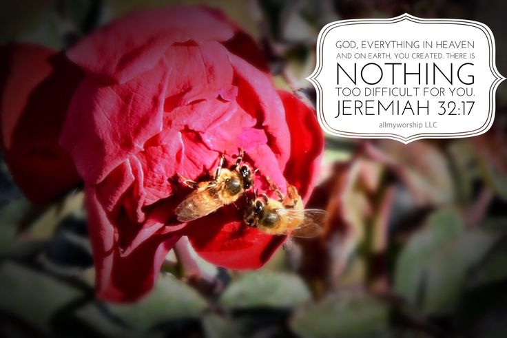 Jeremiah 32:17- Photo taken and edited by Amy Coleman, allmyworship LLC.