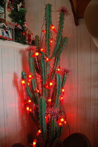 best 25  southwestern christmas decorations ideas on