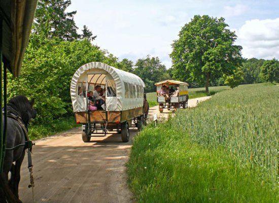 Reisen mit Kindern: Hurra, wir fahren auf den Bauernhof! - BRIGITTE