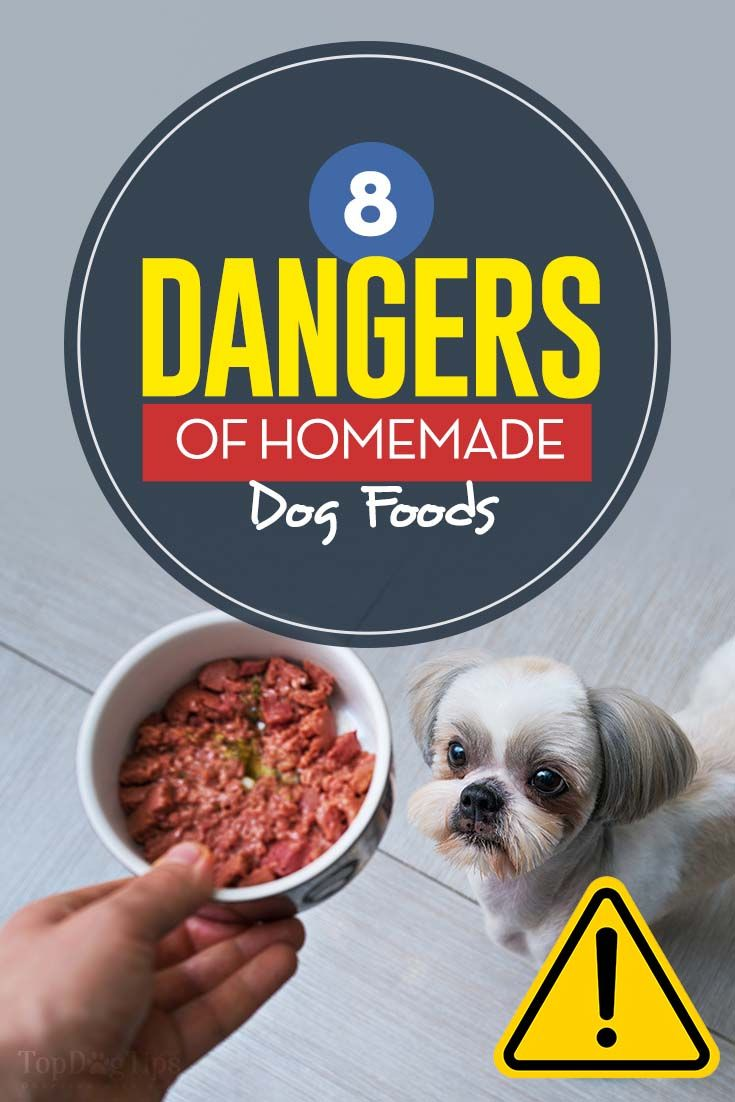 8 Potential Dangers Of Homemade Dog Foods Dog Food Recipes Make