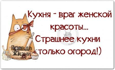 Прикольные фразочки в картинках №51114 » RadioNetPlus.ru развлекательный портал
