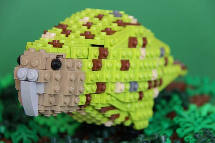 More Lego birds. This time from Oceania! Credit: Thomas Poulsom Karo the kakapo