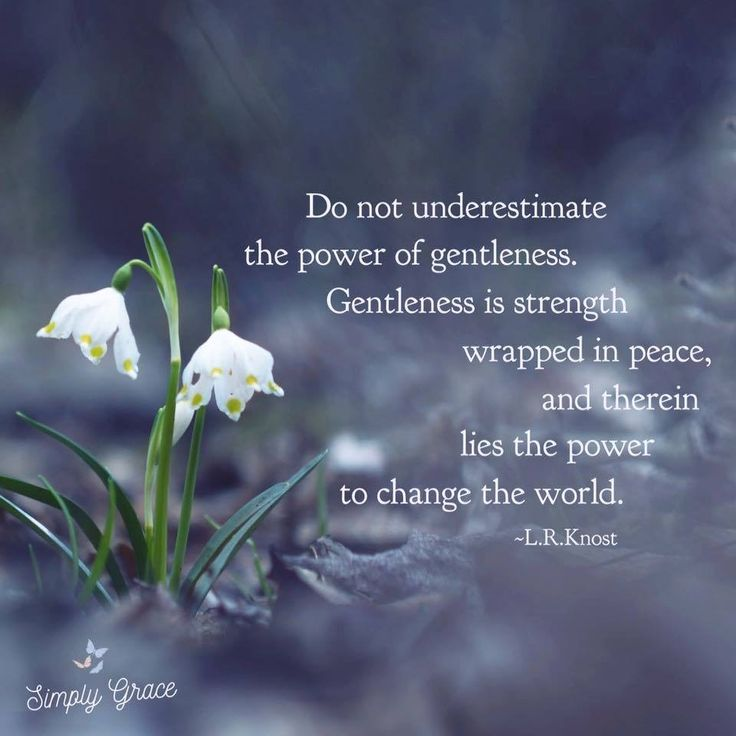 Quote : don't underestimate