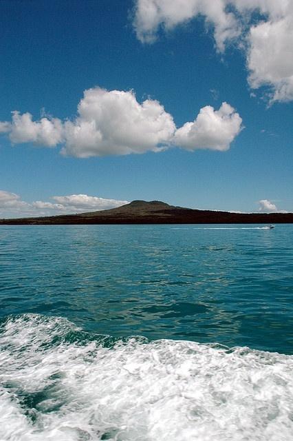 Beautiful island in Auckland