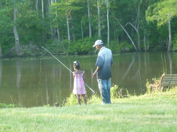 16 best ideas about Becks Fish Camp and Nature Preserve on ...