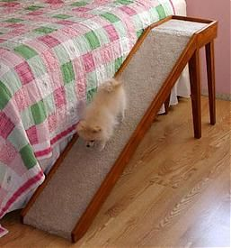 tiny pomeranian needs bedside Dog Ramp