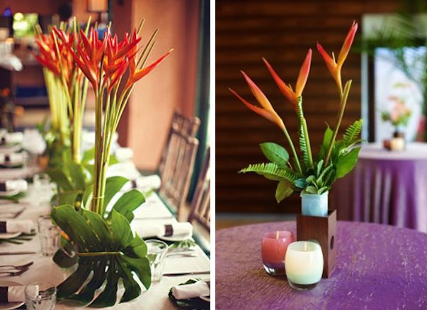 482 Best Tropical Wedding Ideas Images On Pinterest: 115 Best Birds Of Paradise Wedding Flowers Images On
