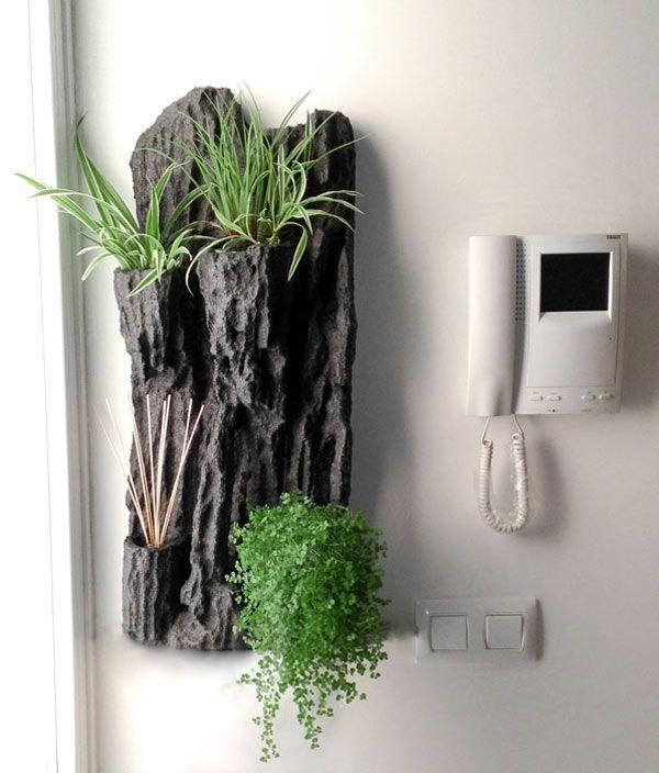 Las 25 mejores ideas sobre soportes de plantas en - Plantas para rocallas ...