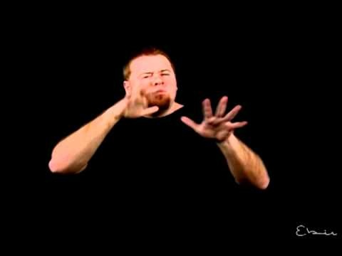 Understanding ASL structure: Type features (slow motion)