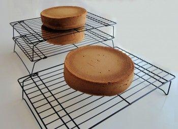 Taartbodem: Hoe bak je een taartbodem van biscuitmix | Taarten maken, taart bakken en cupcakes versieren | Taart recepten