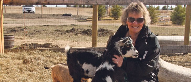 Anyone up for a goat yoga class? - The Western Producer