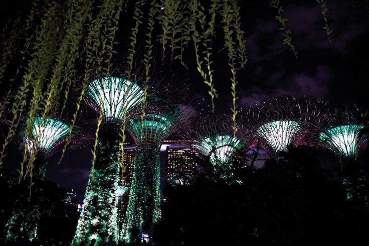 CRAVING NIGHT BEAUTY |  세련된 멋과 짜릿한 멋으로 장식된 싱가포르에는 안락한 휴양과 열정적인 시티라이프가 공존한다. 도회적인 분위기 속에 편안한 매력을 담은 렉서스 처럼. | Lexus i-Magazine Ver.5 앱 다운로드 ▶ www.lexus.co.kr/magazine #Lexus #Magazine #singapore