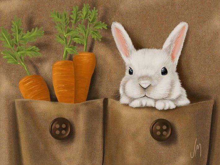 Картинка с зайцами и морковками